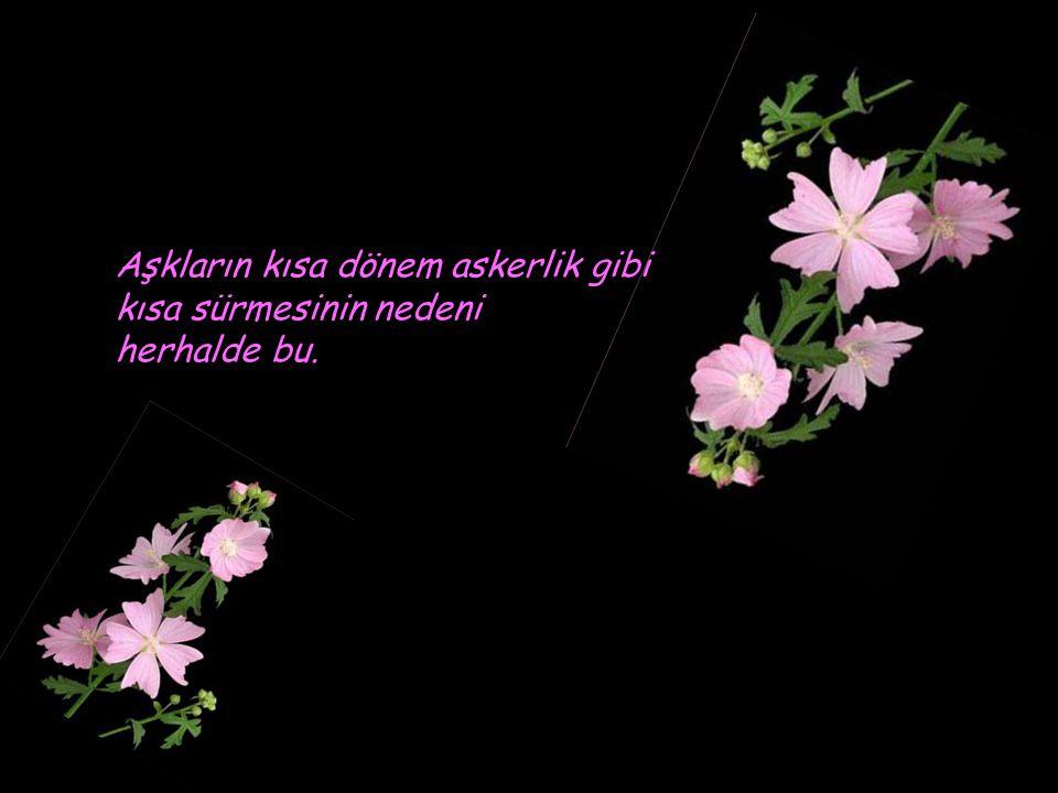 Günümüz insanı aşka aşık, aşığa değil...