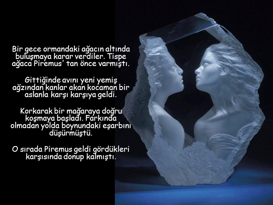 Bir zamanlar birbirlerine aşık iki genç vardı. Kızın adı Tispe, delikanlının ki ise Piremus idi. Bunlar yan yana evlerde otururlardı. Birlikte büyüdül