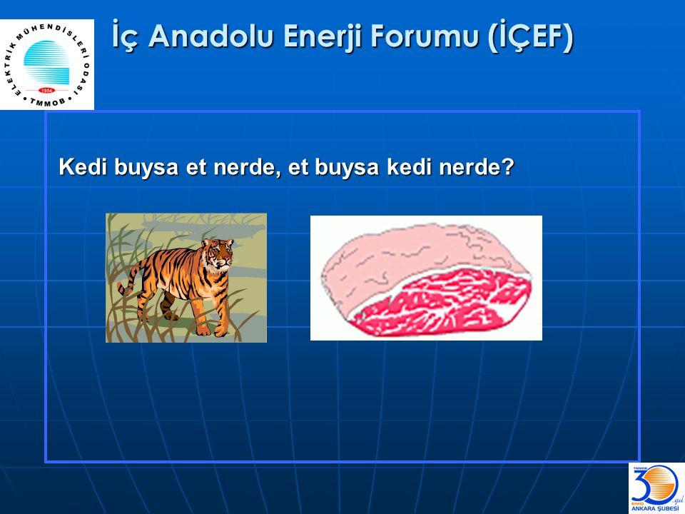 İç Anadolu Enerji Forumu (İÇEF) Kedi buysa et nerde, et buysa kedi nerde?