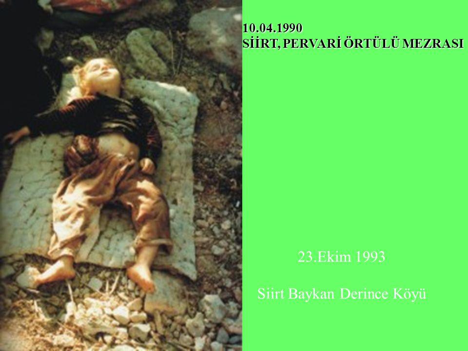 10.04.1990 SİİRT, PERVARİ ÖRTÜLÜ MEZRASI 23.Ekim 1993 Siirt Baykan Derince Köyü