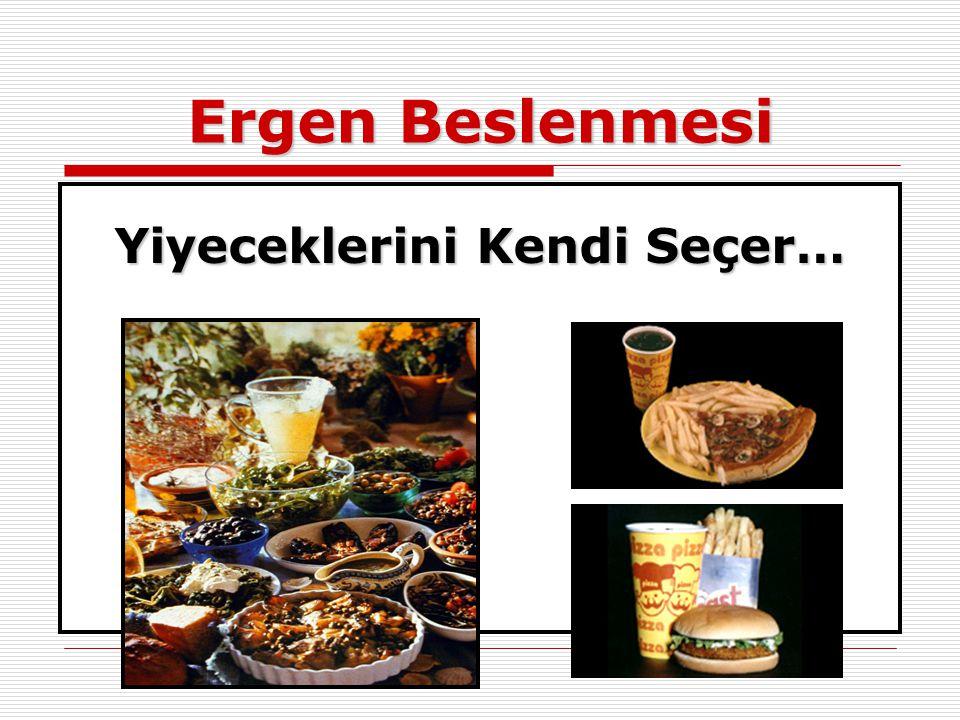 Ergen Beslenmesi Yiyeceklerini Kendi Seçer…