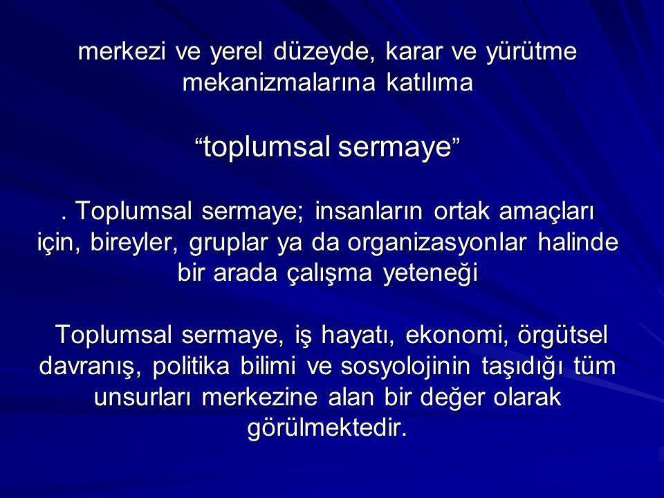 Bu sayılar ve kentsel hizmetlere ve avantajsız kesimlere yönelik(gençler, kadınlar, engelliler gibi) çalışmalar, Türkiye'nin yerel toplumsal sermayesinin İdarenin iznine bağlı kolaylaştırıcılığında, emeği yerelde katılımcılara ve ulusal koordinatörlere ait büyük bir başarıdır.