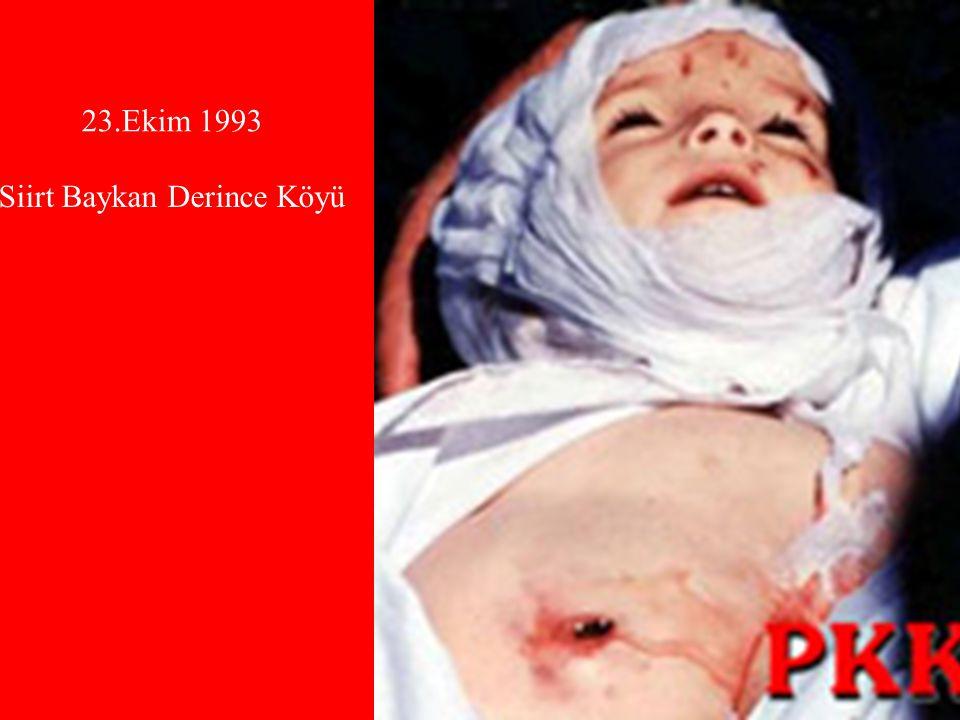 23.Ekim 1993 Siirt Baykan Derince Köyü