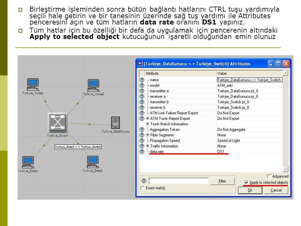  Birleştirme işleminden sonra bütün bağlantı hatlarını CTRL tuşu yardımıyla seçili hale getirin ve bir tanesinin üzerinde sağ tuş yardımı ile Attributes penceresini açın ve tüm hatların data rate oranını DS1 yapınız.