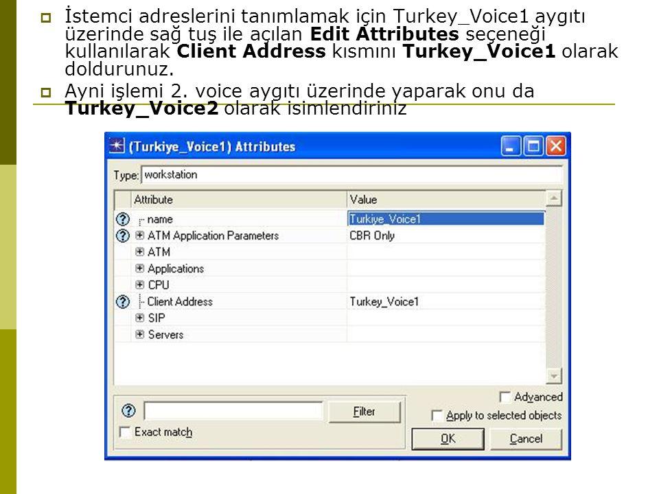  İstemci adreslerini tanımlamak için Turkey_Voice1 aygıtı üzerinde sağ tuş ile açılan Edit Attributes seçeneği kullanılarak Client Address kısmını Turkey_Voice1 olarak doldurunuz.