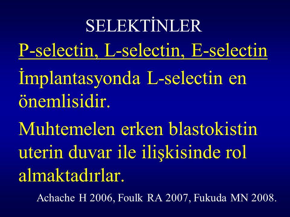 SELEKTİNLER P-selectin, L-selectin, E-selectin İmplantasyonda L-selectin en önemlisidir. Muhtemelen erken blastokistin uterin duvar ile ilişkisinde ro