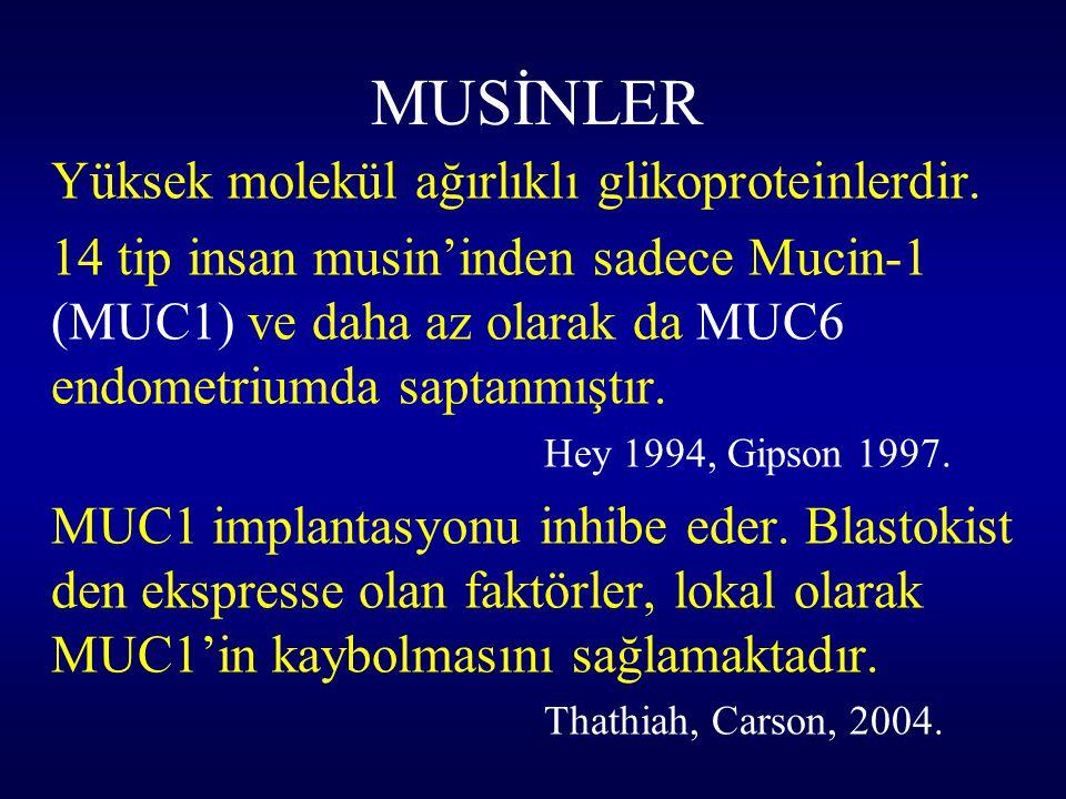 MUSİNLER Yüksek molekül ağırlıklı glikoproteinlerdir. 14 tip insan musin'inden sadece Mucin-1 (MUC1) ve daha az olarak da MUC6 endometriumda saptanmış