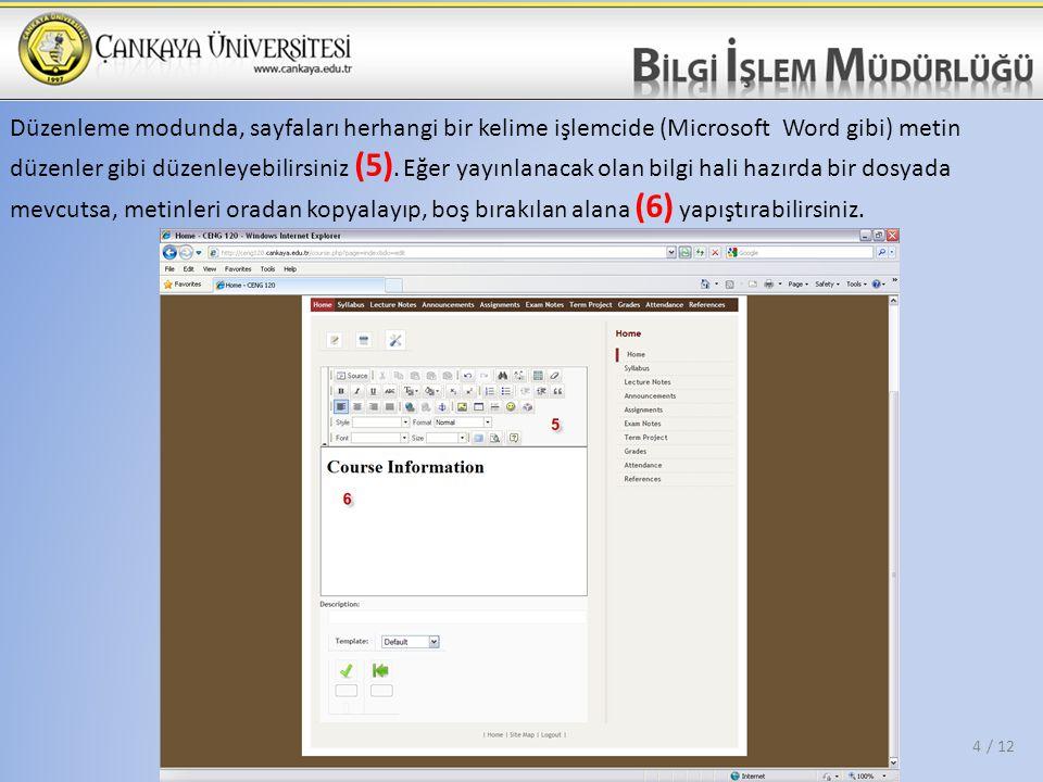 Düzenleme modunda, sayfaları herhangi bir kelime işlemcide (Microsoft Word gibi) metin düzenler gibi düzenleyebilirsiniz (5). Eğer yayınlanacak olan b