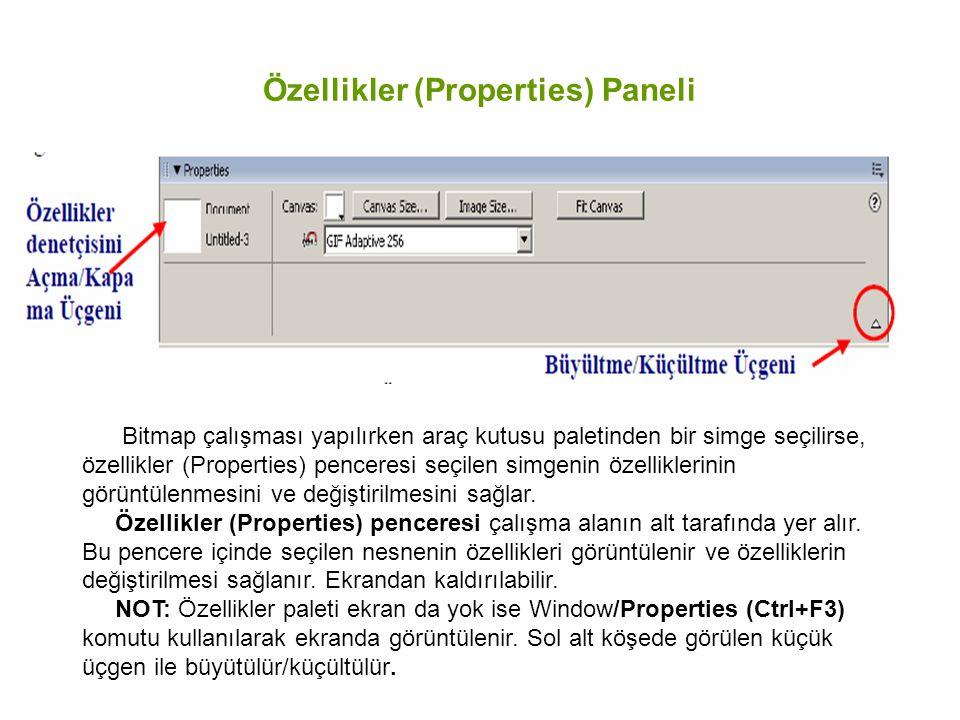 Özellikler (Properties) Paneli Bitmap çalışması yapılırken araç kutusu paletinden bir simge seçilirse, özellikler (Properties) penceresi seçilen simge