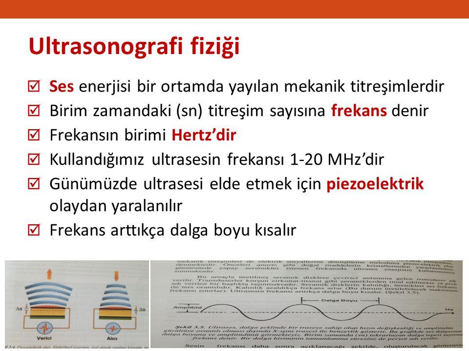 Akciğer USG dinamik bir değerlendirmedir .