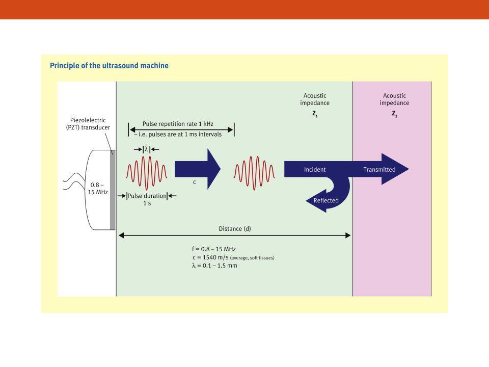 Değerlendirme basamakları 1.Basamak • Anterior duvar • Pnömotoraks 2.
