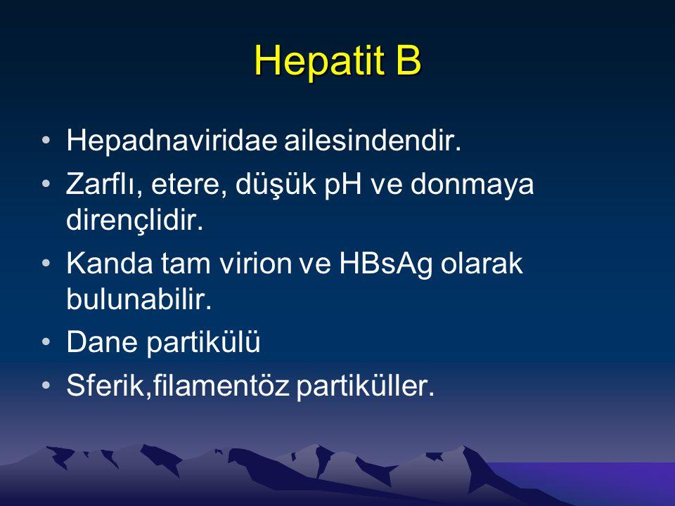 Hepatit B •Hepadnaviridae ailesindendir. •Zarflı, etere, düşük pH ve donmaya dirençlidir. •Kanda tam virion ve HBsAg olarak bulunabilir. •Dane partikü