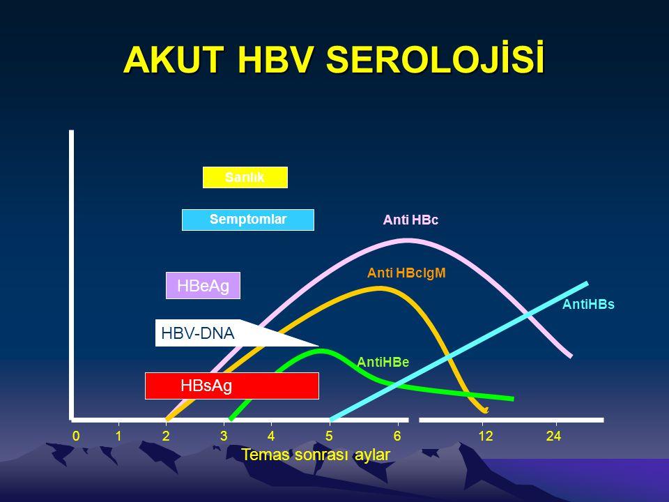 AKUT HBV SEROLOJİSİ HBsAg HBeAg HBV-DNA Anti HBc Anti HBcIgM AntiHBe AntiHBs PCR 01234561224 Temas sonrası aylar Semptomlar Sarılık