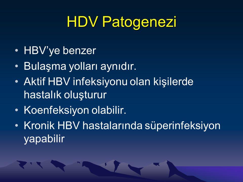 HDV Patogenezi •HBV'ye benzer •Bulaşma yolları aynıdır. •Aktif HBV infeksiyonu olan kişilerde hastalık oluşturur •Koenfeksiyon olabilir. •Kronik HBV h