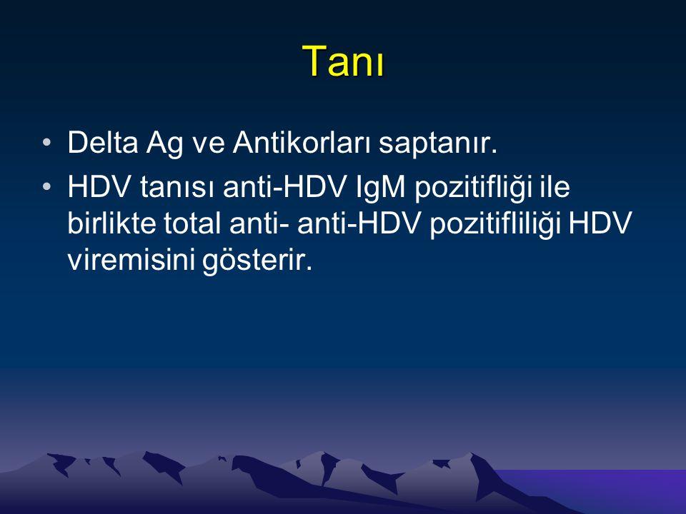 Tanı •Delta Ag ve Antikorları saptanır. •HDV tanısı anti-HDV IgM pozitifliği ile birlikte total anti- anti-HDV pozitifliliği HDV viremisini gösterir.