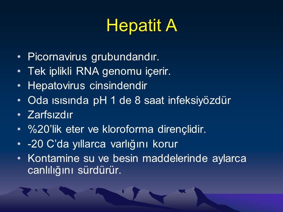 Kor-Prekor Mutantları Prekor Bölgesinde Mutasyon •HBeAg üretilemez •Viral replikasyon etkilenmez –HBV replikasyonu için HBeAg translasyonu gerekli değil