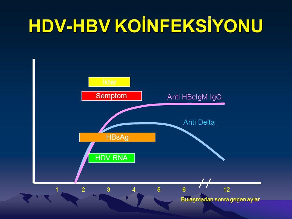 HDV-HBV KOİNFEKSİYONU 1 2 3 4 5 6 12 HDV RNA HBsAg Anti Delta Anti HBcIgM IgG Semptom İkter Bulaşmadan sonra geçen aylar