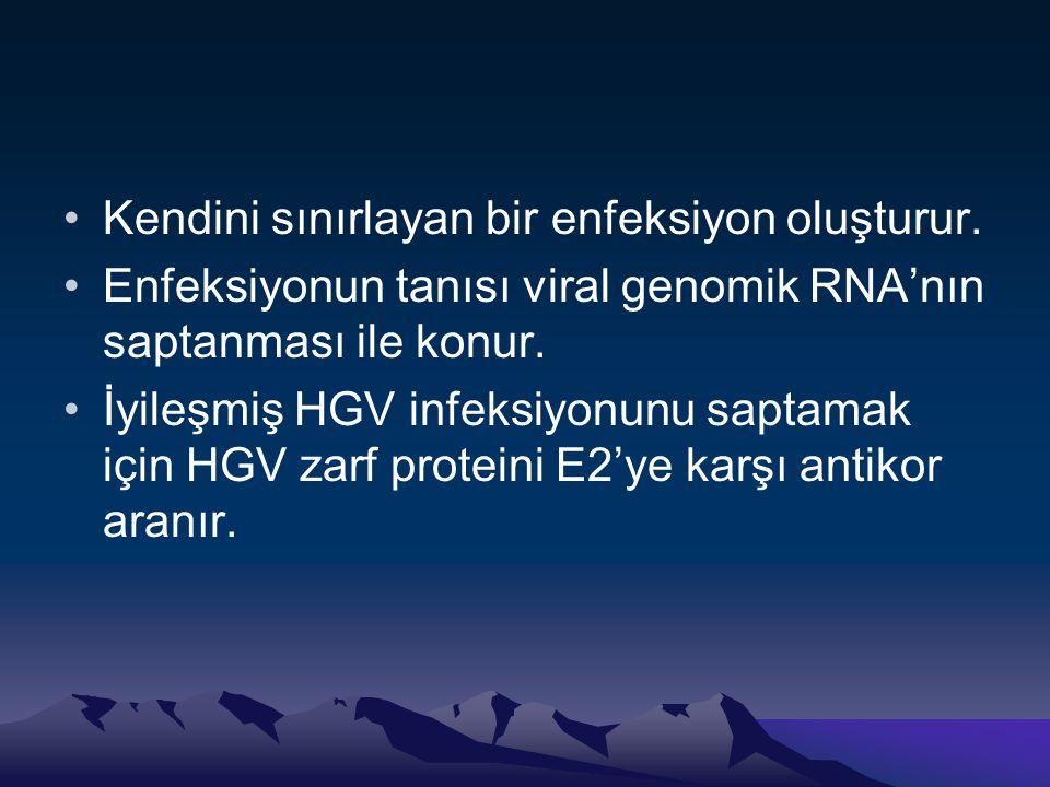 •Kendini sınırlayan bir enfeksiyon oluşturur. •Enfeksiyonun tanısı viral genomik RNA'nın saptanması ile konur. •İyileşmiş HGV infeksiyonunu saptamak i
