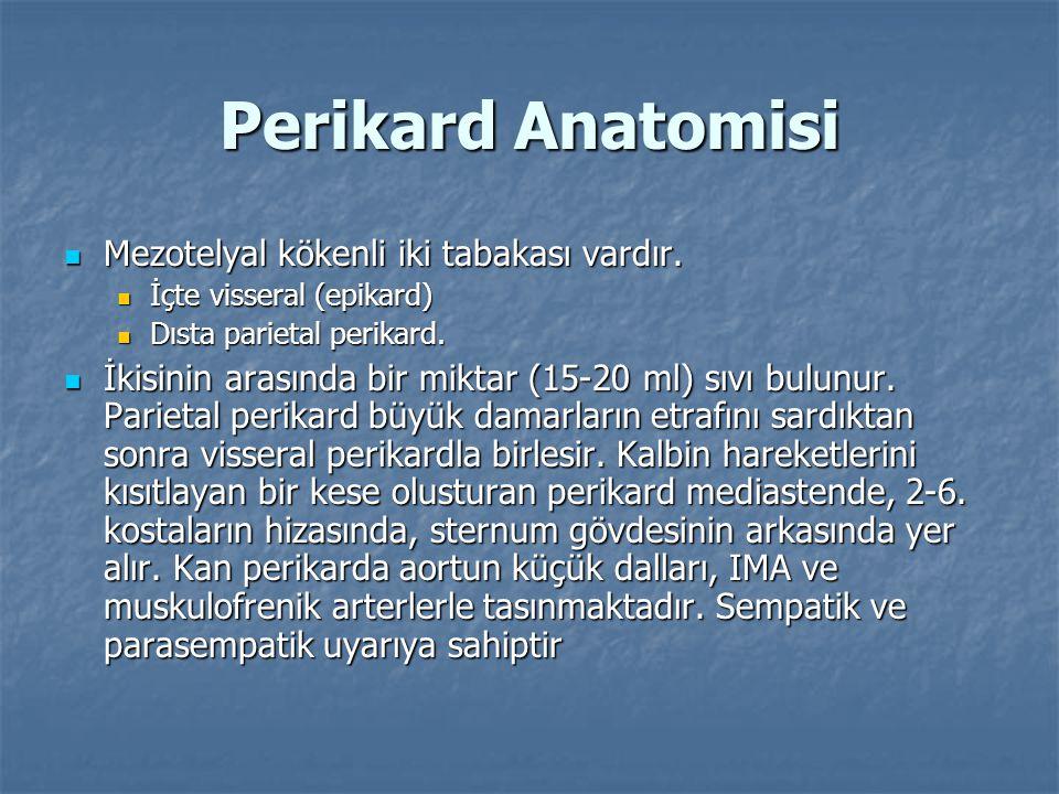 Perikard Anatomisi  Mezotelyal kökenli iki tabakası vardır.  İçte visseral (epikard)  Dısta parietal perikard.  İkisinin arasında bir miktar (15-2