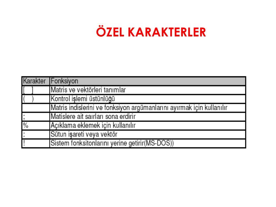 ÖZEL KARAKTERLER
