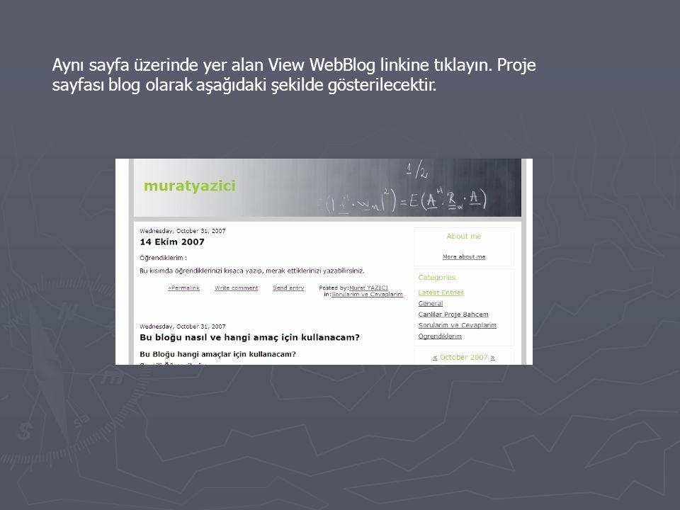 Aynı sayfa üzerinde yer alan View WebBlog linkine tıklayın.