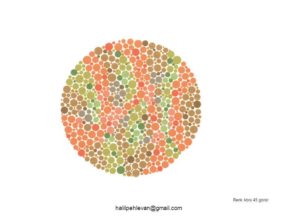 halilpehlevan@gmail.com Renk körü 45 görür