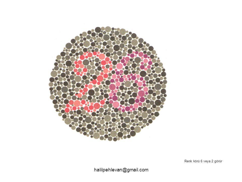 halilpehlevan@gmail.com Renk körü 6 veya 2 görür