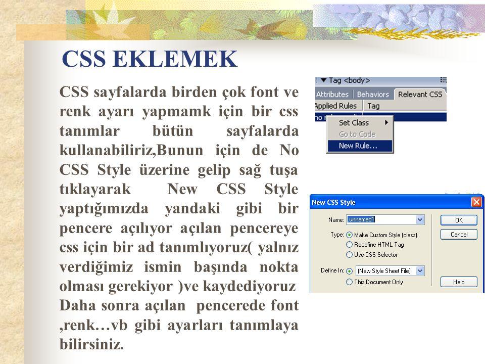 CSS EKLEMEK CSS sayfalarda birden çok font ve renk ayarı yapmamk için bir css tanımlar bütün sayfalarda kullanabiliriz,Bunun için de No CSS Style üzer