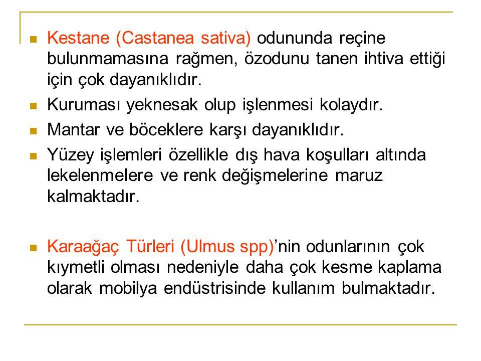  Kestane (Castanea sativa) odununda reçine bulunmamasına rağmen, özodunu tanen ihtiva ettiği için çok dayanıklıdır.