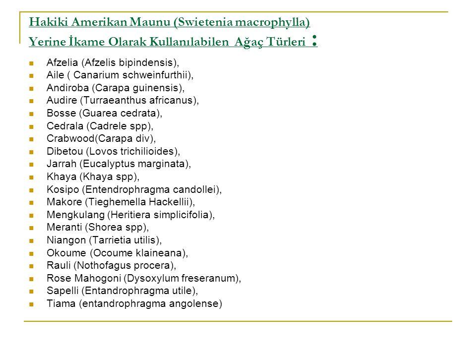 Hakiki Amerikan Maunu (Swietenia macrophylla) Yerine İkame Olarak Kullanılabilen Ağaç Türleri :  Afzelia (Afzelis bipindensis),  Aile ( Canarium schweinfurthii),  Andiroba (Carapa guinensis),  Audire (Turraeanthus africanus),  Bosse (Guarea cedrata),  Cedrala (Cadrele spp),  Crabwood(Carapa div),  Dibetou (Lovos trichilioides),  Jarrah (Eucalyptus marginata),  Khaya (Khaya spp),  Kosipo (Entendrophragma candollei),  Makore (Tieghemella Hackellii),  Mengkulang (Heritiera simplicifolia),  Meranti (Shorea spp),  Niangon (Tarrietia utilis),  Okoume (Ocoume klaineana),  Rauli (Nothofagus procera),  Rose Mahogoni (Dysoxylum freseranum),  Sapelli (Entandrophragma utile),  Tiama (entandrophragma angolense)