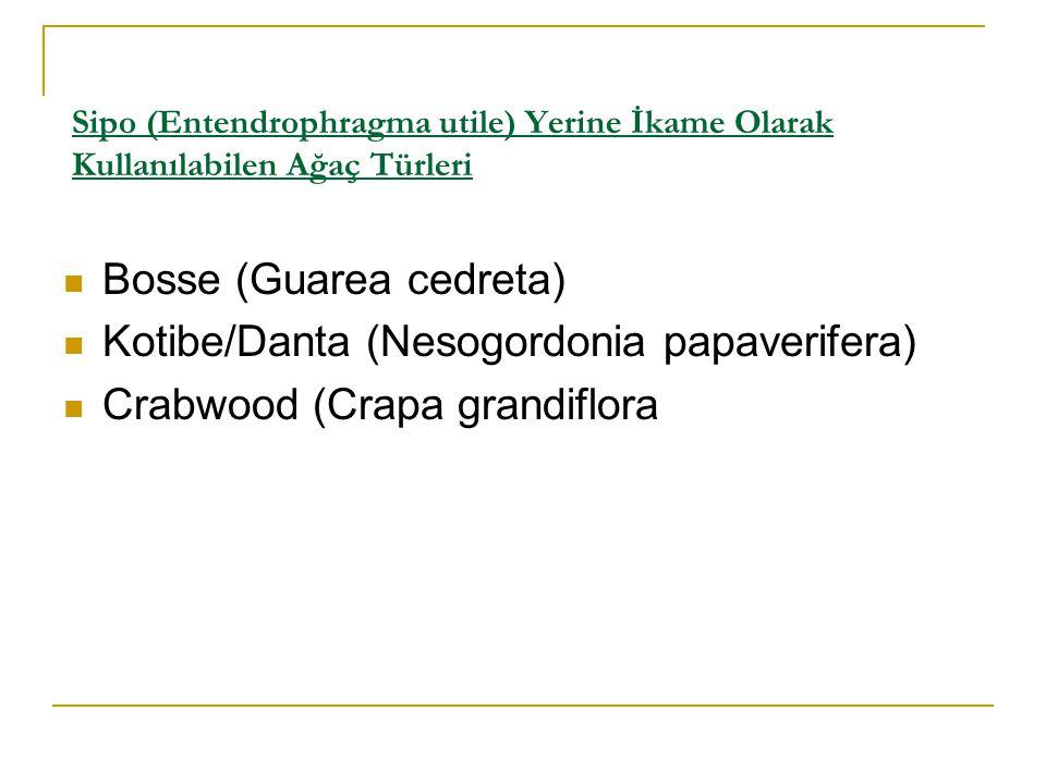Sipo (Entendrophragma utile) Yerine İkame Olarak Kullanılabilen Ağaç Türleri  Bosse (Guarea cedreta)  Kotibe/Danta (Nesogordonia papaverifera)  Crabwood (Crapa grandiflora