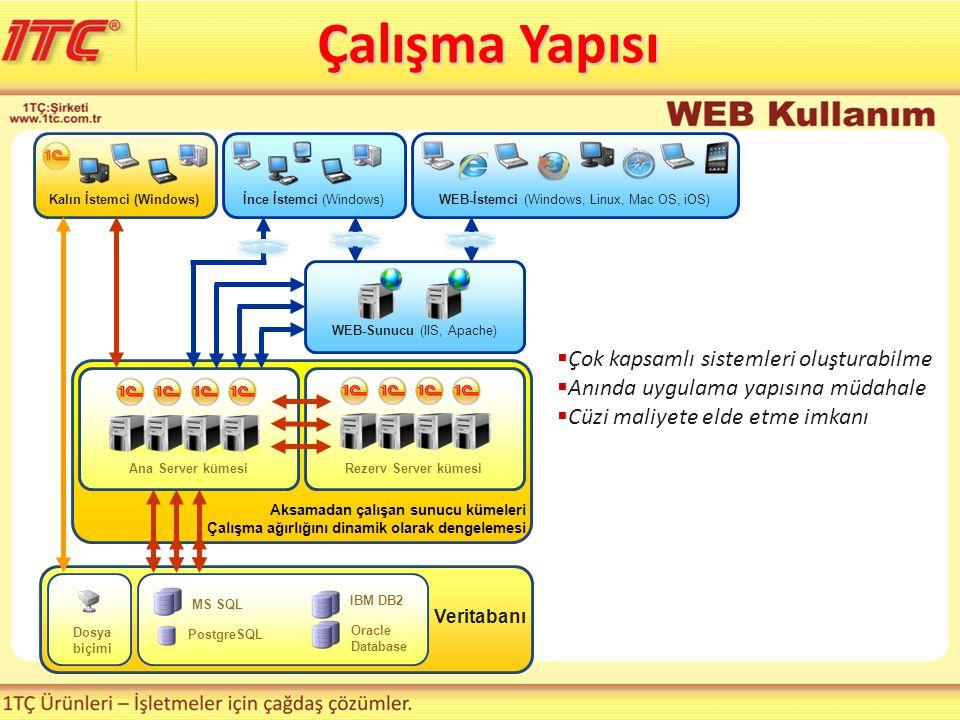 Aksamadan çalışan sunucu kümeleri Çalışma ağırlığını dinamik olarak dengelemesi Rezerv Server kümesi Veritabanı PostgreSQL MS SQL IBM DB2 Dosya biçimi Oracle Database Kalın İstemci (Windows) WEB-İstemci (Windows, Linux, Mac OS, iOS) WEB-Sunucu (IIS, Apache) Ana Server kümesi  Çok kapsamlı sistemleri oluşturabilme  Anında uygulama yapısına müdahale  Cüzi maliyete elde etme imkanı İnce İstemci (Windows) Çalışma Yapısı