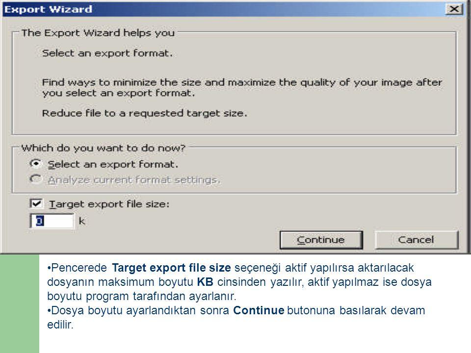 •Pencerede Target export file size seçeneği aktif yapılırsa aktarılacak dosyanın maksimum boyutu KB cinsinden yazılır, aktif yapılmaz ise dosya boyutu program tarafından ayarlanır.