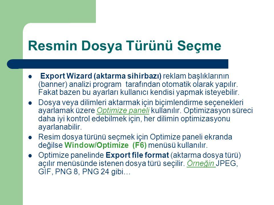 Resmin Dosya Türünü Seçme  Export Wizard (aktarma sihirbazı) reklam başlıklarının (banner) analizi program tarafından otomatik olarak yapılır.