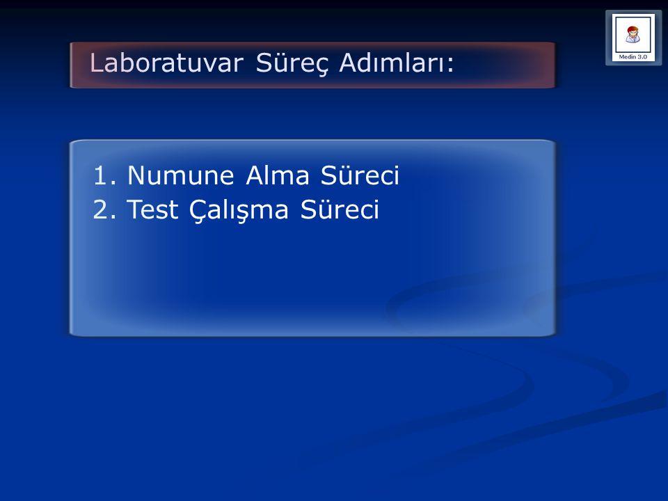 Laboratuvar Süreç Adımları: 1. Numune Alma Süreci 2. Test Çalışma Süreci