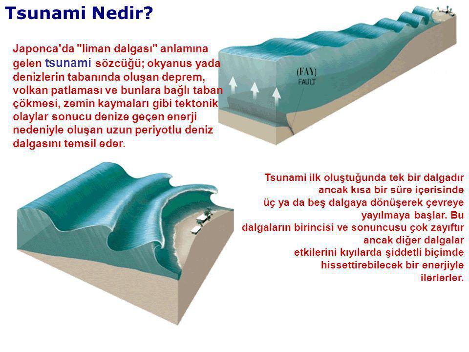 Tsunami Nedir? Japonca'da