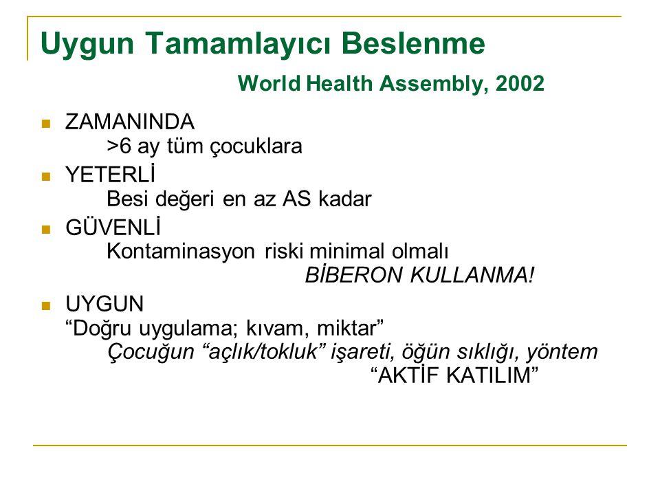 Uygun Tamamlayıcı Beslenme World Health Assembly, 2002  ZAMANINDA >6 ay tüm çocuklara  YETERLİ Besi değeri en az AS kadar  GÜVENLİ Kontaminasyon ri