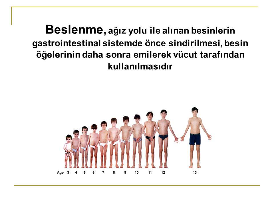 Beslenme, ağız yolu ile alınan besinlerin gastrointestinal sistemde önce sindirilmesi, besin öğelerinin daha sonra emilerek vücut tarafından kullanılm