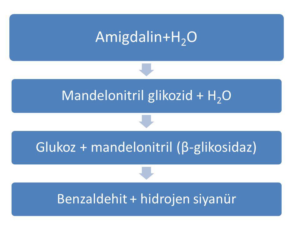 b) Siyanojenik bitkiler olarak da isimlendirilen kayısı, badem, şeftali, elma ve vişne çekirdeklerinin yapısında Amigdalin bileşiği bulunmaktadır, bu