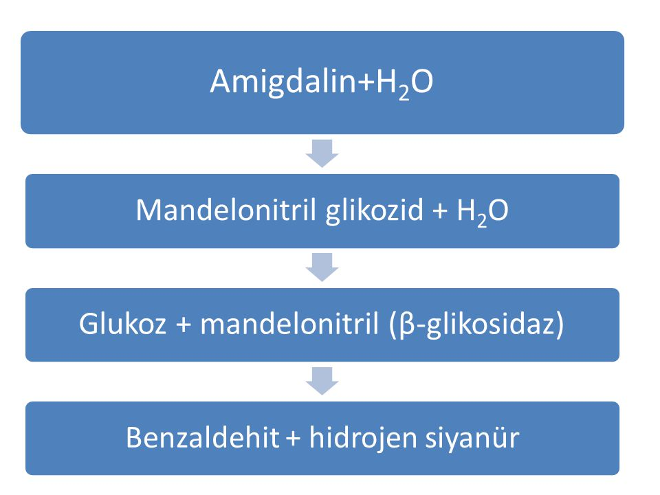 Amigdalin+H2O Mandelonitril glikozid + H2OGlukoz + mandelonitril (β-glikosidaz) Benzaldehit + hidrojen siyanür