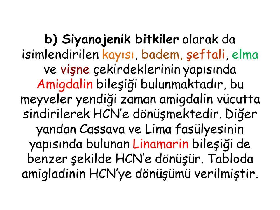 b) Siyanojenik bitkiler olarak da isimlendirilen kayısı, badem, şeftali, elma ve vişne çekirdeklerinin yapısında Amigdalin bileşiği bulunmaktadır, bu meyveler yendiği zaman amigdalin vücutta sindirilerek HCN'e dönüşmektedir.