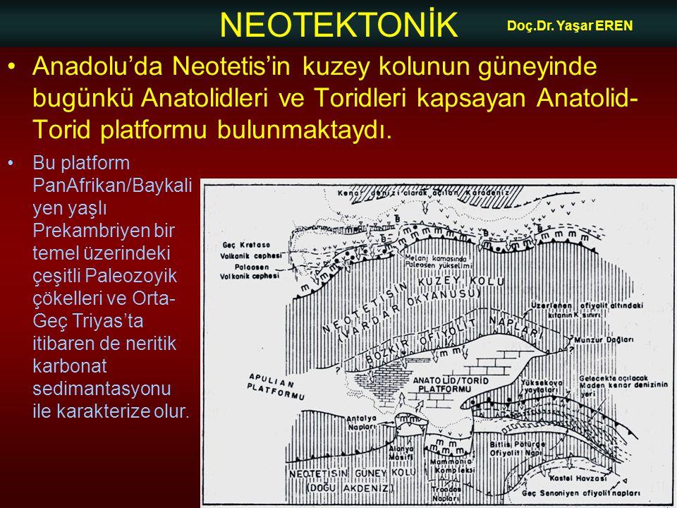 NEOTEKTONİK Doç.Dr. Yaşar EREN •Anadolu'da Neotetis'in kuzey kolunun güneyinde bugünkü Anatolidleri ve Toridleri kapsayan Anatolid- Torid platformu bu