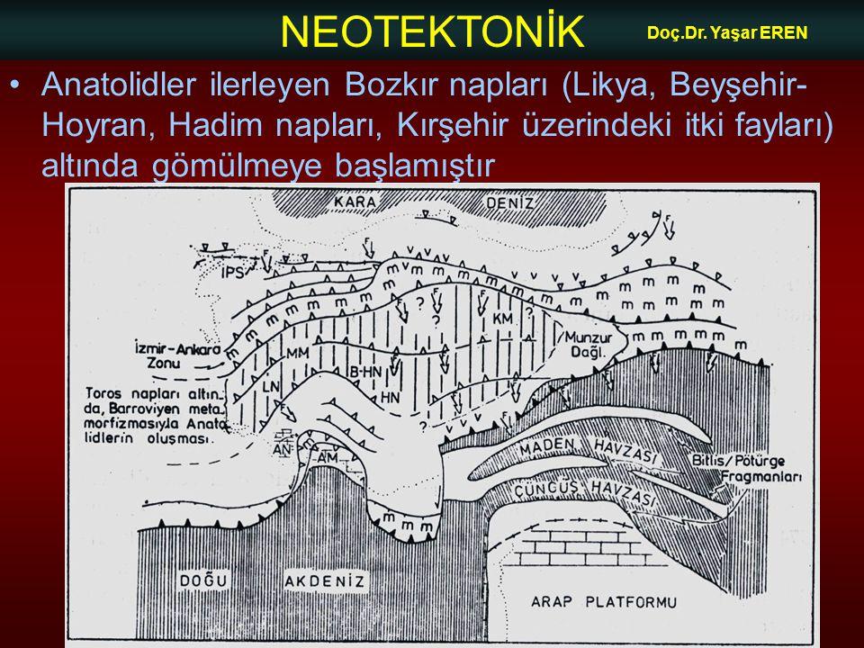 NEOTEKTONİK Doç.Dr. Yaşar EREN •Anatolidler ilerleyen Bozkır napları (Likya, Beyşehir- Hoyran, Hadim napları, Kırşehir üzerindeki itki fayları) altınd