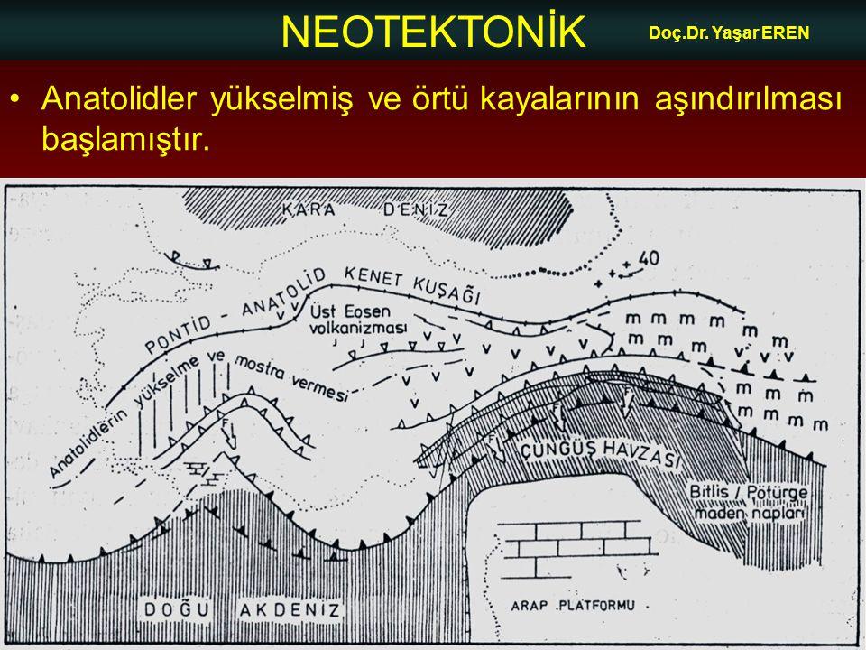 NEOTEKTONİK Doç.Dr. Yaşar EREN •Anatolidler yükselmiş ve örtü kayalarının aşındırılması başlamıştır.