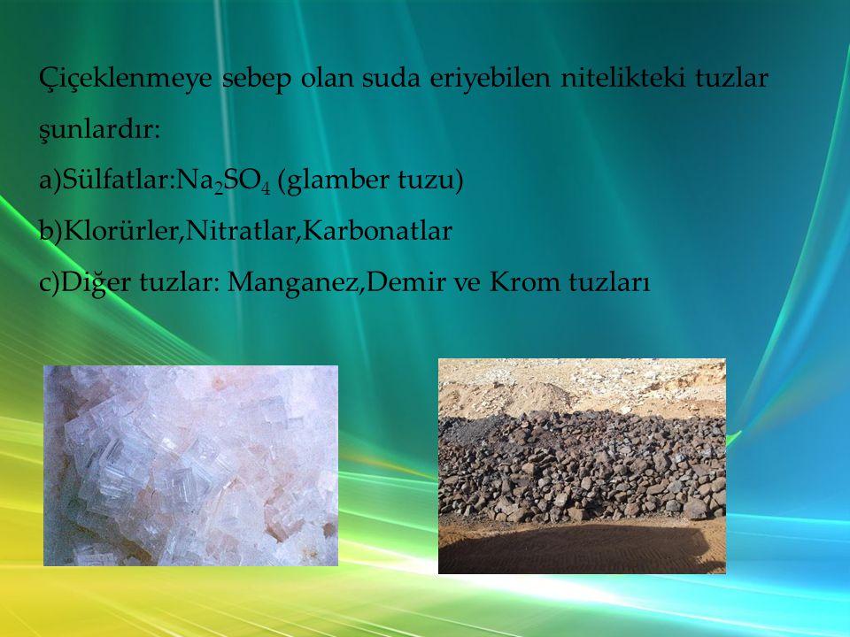 Çiçeklenmeye sebep olan suda eriyebilen nitelikteki tuzlar şunlardır: a)Sülfatlar:Na 2 SO 4 (glamber tuzu) b)Klorürler,Nitratlar,Karbonatlar c)Diğer tuzlar: Manganez,Demir ve Krom tuzları