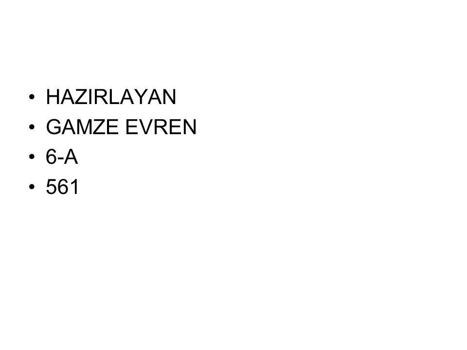 •HAZIRLAYAN •GAMZE EVREN •6-A •561
