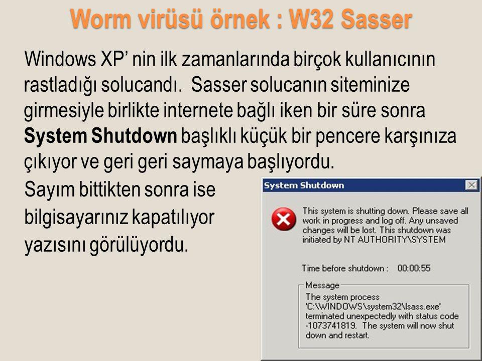 Worm virüsü örnek : W32 Sasser Windows XP' nin ilk zamanlarında birçok kullanıcının rastladığı solucandı. Sasser solucanın siteminize girmesiyle birli
