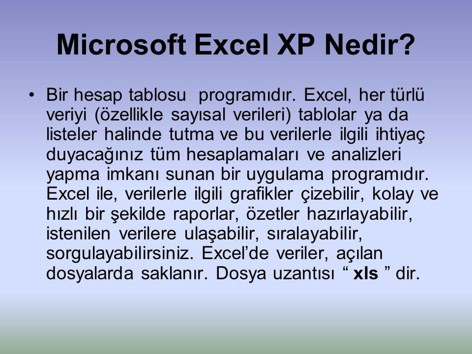 Microsoft Excel XP Nedir? •Bir hesap tablosu programıdır. Excel, her türlü veriyi (özellikle sayısal verileri) tablolar ya da listeler halinde tutma v