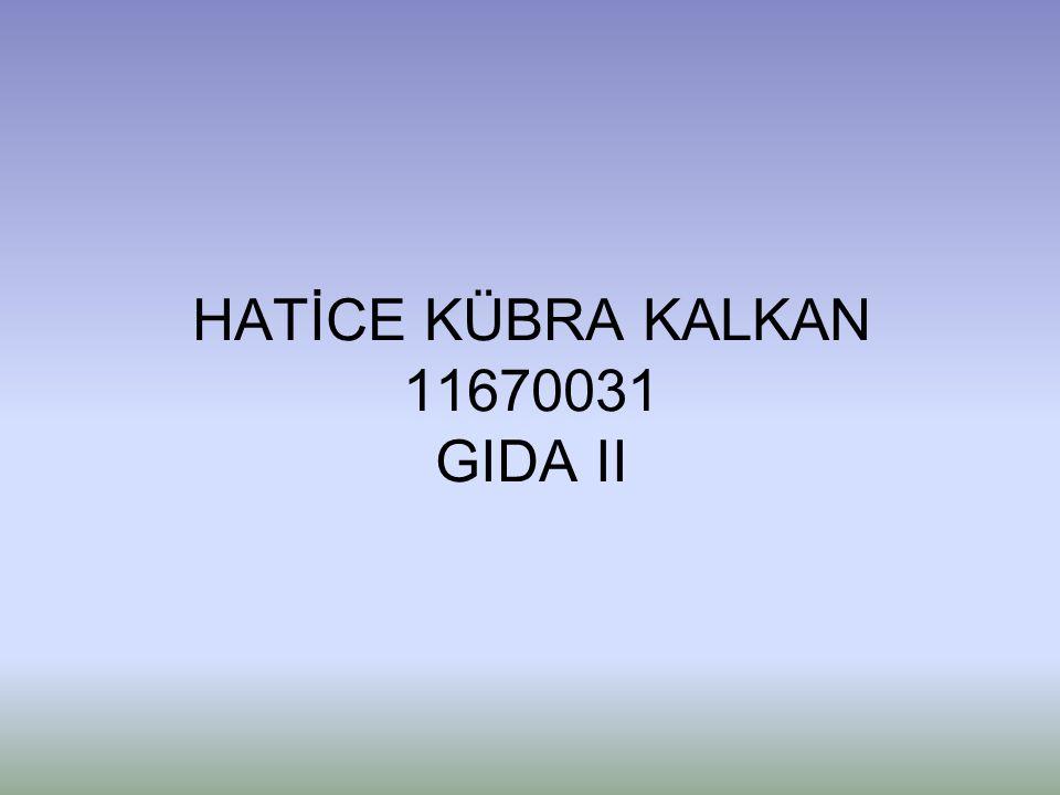 HATİCE KÜBRA KALKAN 11670031 GIDA II