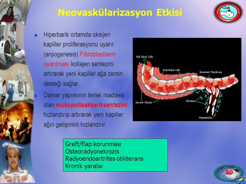 30 Neovaskülarizasyon Etkisi  Hiperbarik ortamda oksijen kapiller proliferasyonu uyarır (anjiogenesis) Fibroblastların uyarılması kollajen sentezini